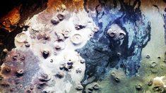 Des scientifiques découvrent 400 mystérieuses structures en pierre aux alentours d'un ancien volcan en Arabie Saoudite