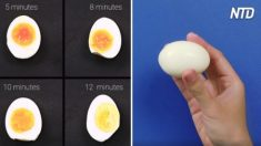 8 techniques intelligentes pour préparer les œufs qui rendront votre vie bien plus facile