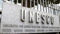 Les albums du Père Castor entrent au patrimoine mondial de l'Unesco