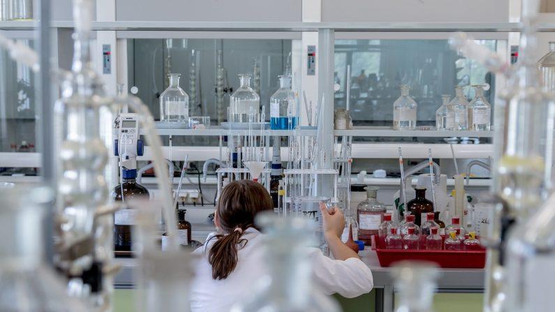 Découverte d'une molécule pour la thérapie de la sclérose en plaques