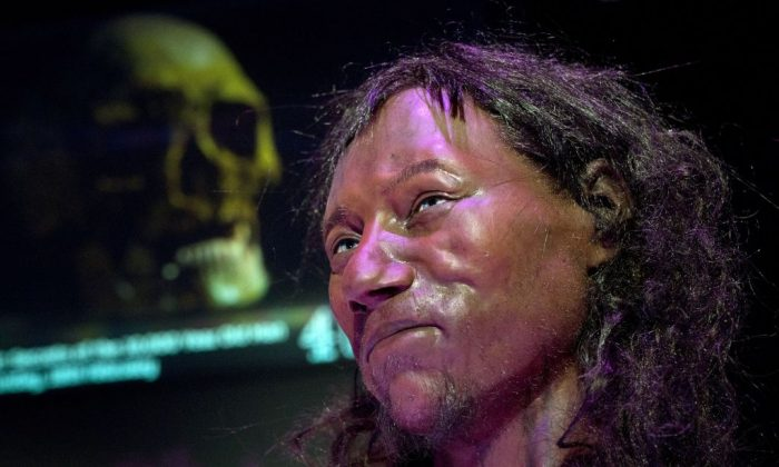Des études ADN révèlent que le premier homme britannique moderne avait la peau «foncée à noire»
