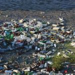 Des scientifiques créent par hasard une enzyme qui dévore le plastique des bouteilles
