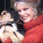 Brigitte Bardot plaide la cause des animaux auprès d'Emmanuel Macron