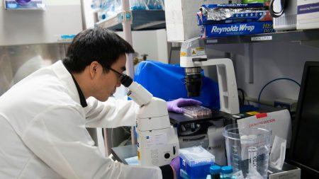 USA: feu vert à un traitement novateur contre une maladie génétique rare