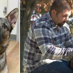 Un policier sent quelque chose d'«étrange» quand son partenaire, un chien policier, refuse de s'asseoir – alors il a 2 solutions