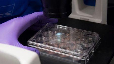 Des médecins affirment que le cancer d'une mère en Ohio a disparu après un essai clinique révolutionnaire