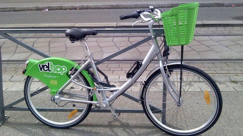 Strasbourg: des bicyclettes du service de location Vélhop retrouvées au Maroc