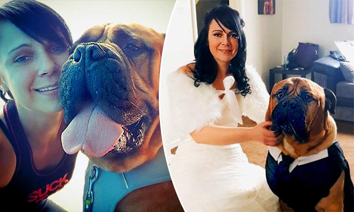 La mariée déplace sa date de mariage pour que son chien bien-aimé atteint d'un cancer en phase terminale puisse y assister